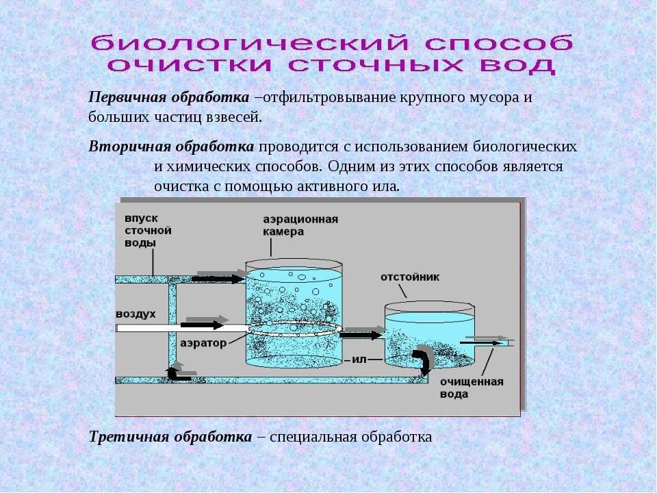 Станция для биологической очистки канализации на даче: особенности и принцип действия, отзывы