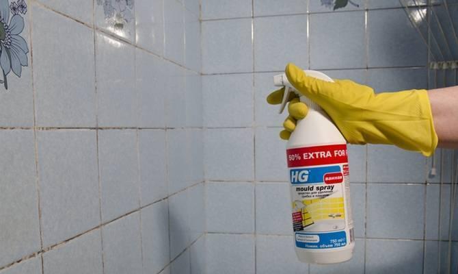 Как удалить черную плесень в ванной комнате и вывести ее навсегда?