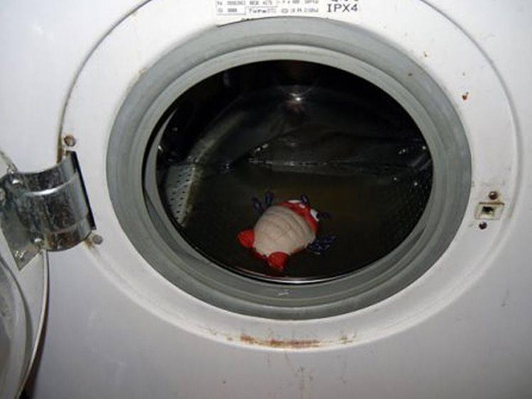 8 причин, почему стиральная машина не забирает ополаскиватель, кондиционер остается в стиральной машине | рембыттех