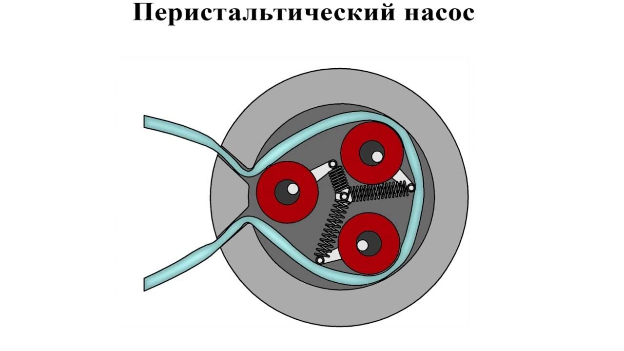 Перистальтический насос: типы и описание. как сделать перистальтический насос своими руками?