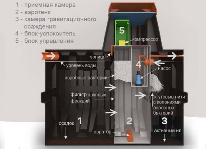 Септик кедр — обзор, устройство, достоинства и недостатки, отзывы