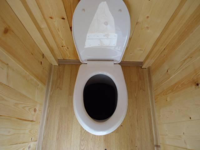 Какой унитаз выбрать для дома: как правильно подобрать хороший туалет в частный деревянный дом, какие есть лучшие варианты
