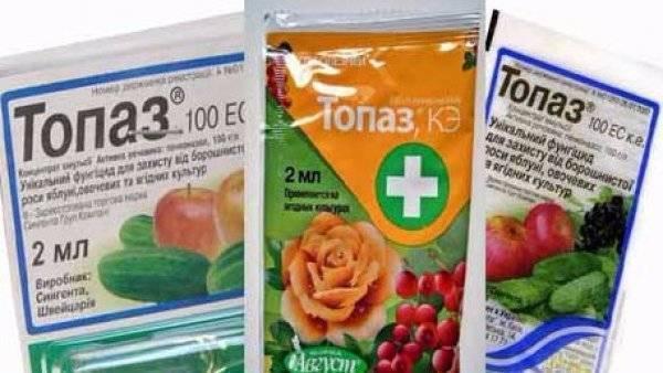 Фунгицид топаз – описание препарата и инструкция по применению