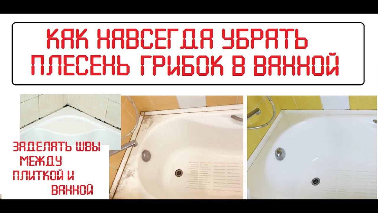 Как удалить грибок в ванной комнате: способы борьбы с ним