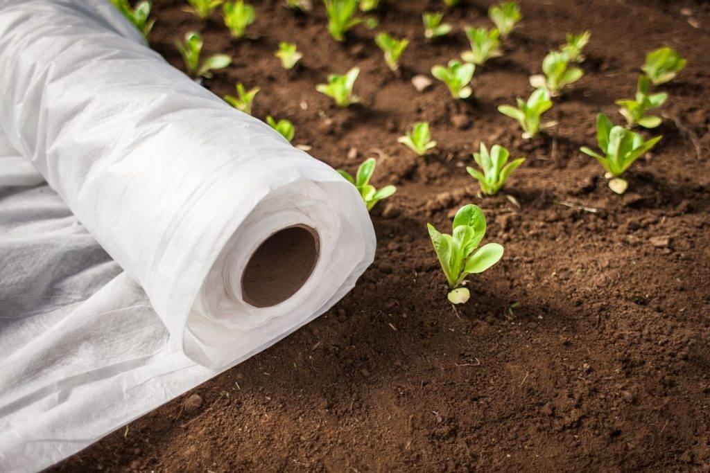 Что такое септик для канализации в частном доме, для чего нужен и как он работает: инструкция +фото и видео