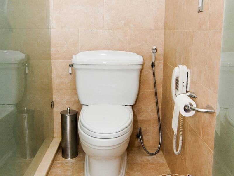 Установка гигиенического душа в туалете, что такое гигиенический душ, особенности и фото