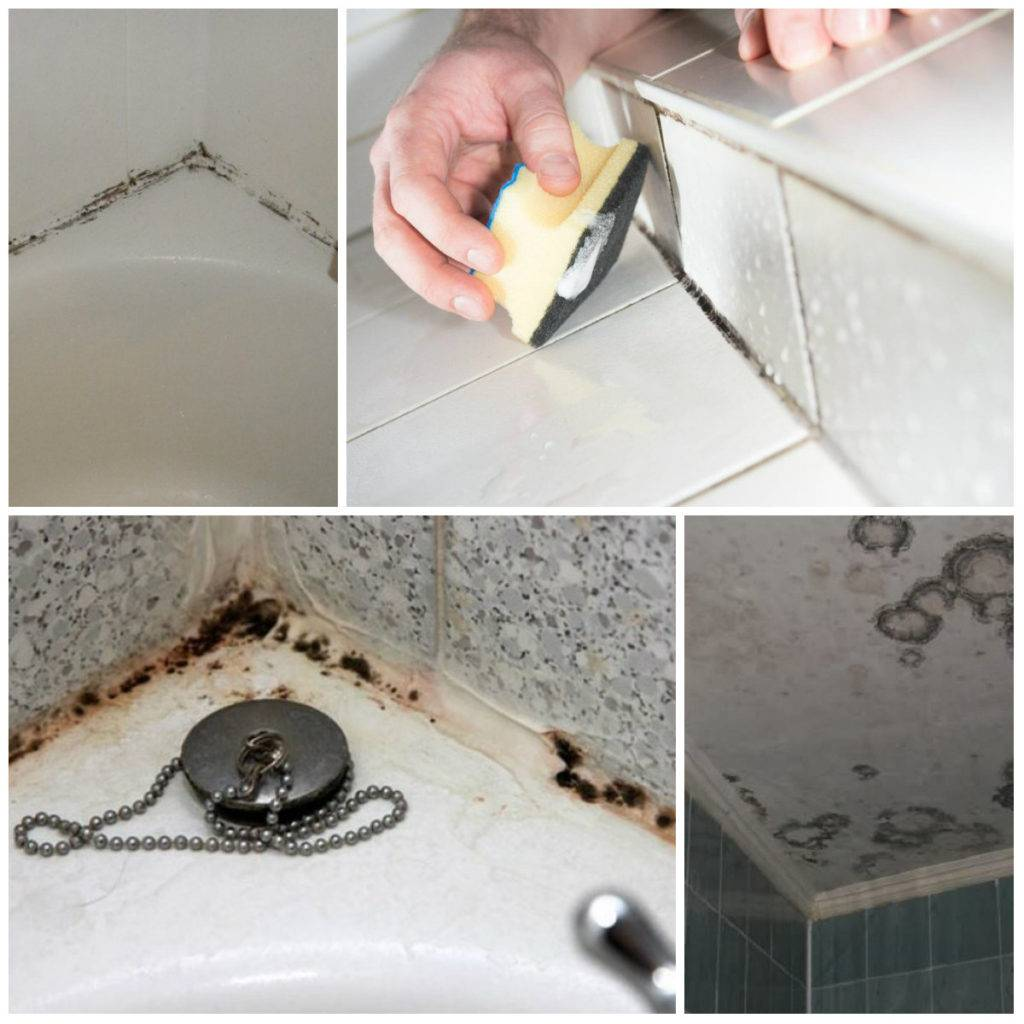 Как удалить грибок в ванной комнате навсегда — средства и методы избавления (видео, фото)