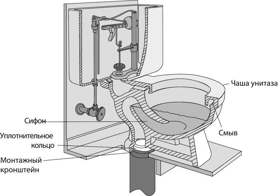Как установить унитаз своими руками? этапы монтажа и полезные советы: выбор унитаза, установка, сборка и установка бачка, подключение воды.