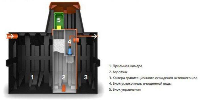Септик ergobox (Эргобокс): 4s, 4pr, 6 8 и другие модели: монтаж своими руками, отзывы +Фото