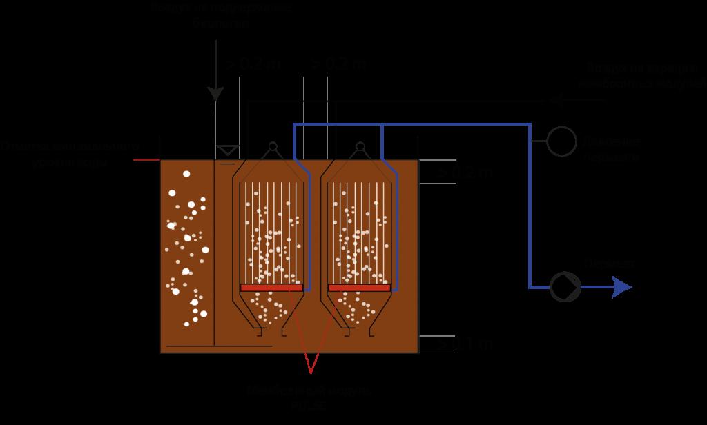 Как работает биологическая очистка сточных вод
