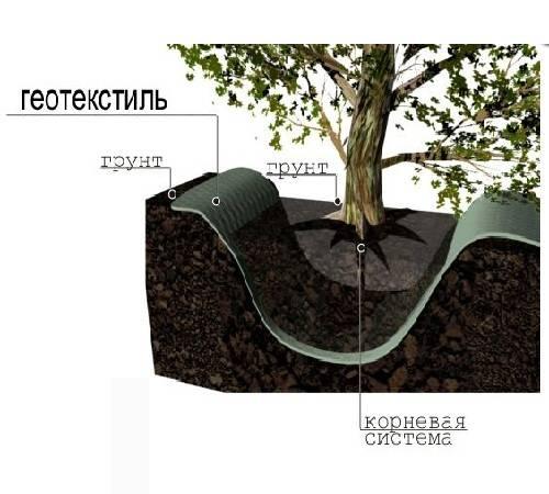 Что такое геотекстиль, применение и использование на даче