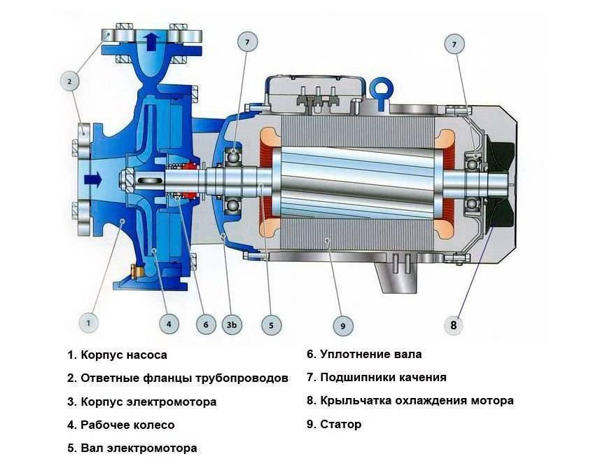Как устроены разные типы водяных насосов: особенности конструкции, применения