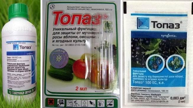 Препарат топаз для винограда инструкция по применению фунгицида