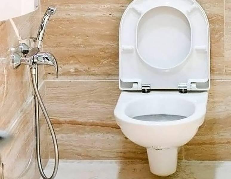 Смесители для гигиенического душа в туалете - все о канализации