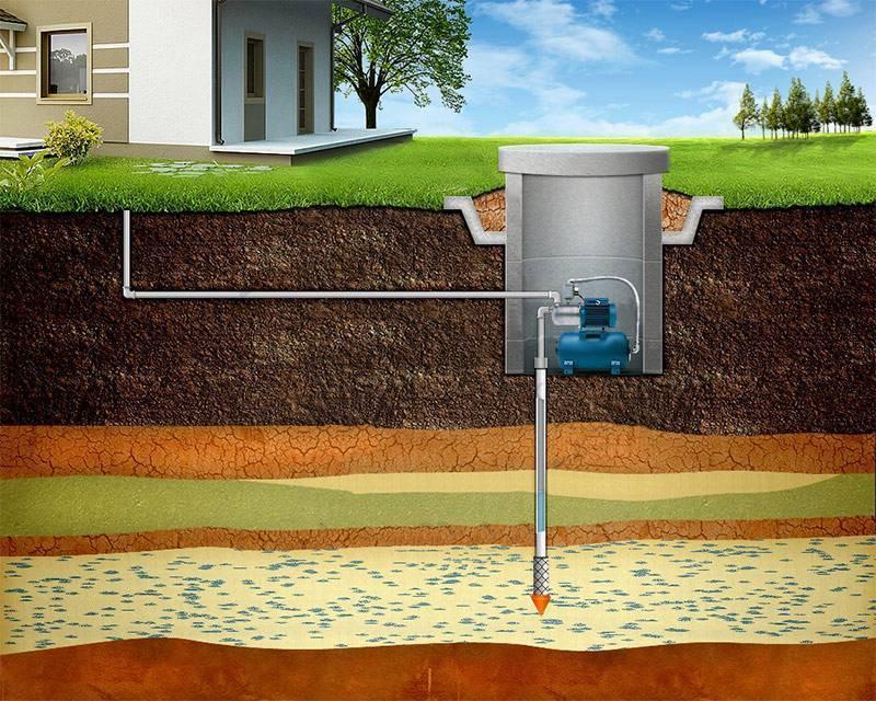 Бочки для воды на дачу: особенности выбора