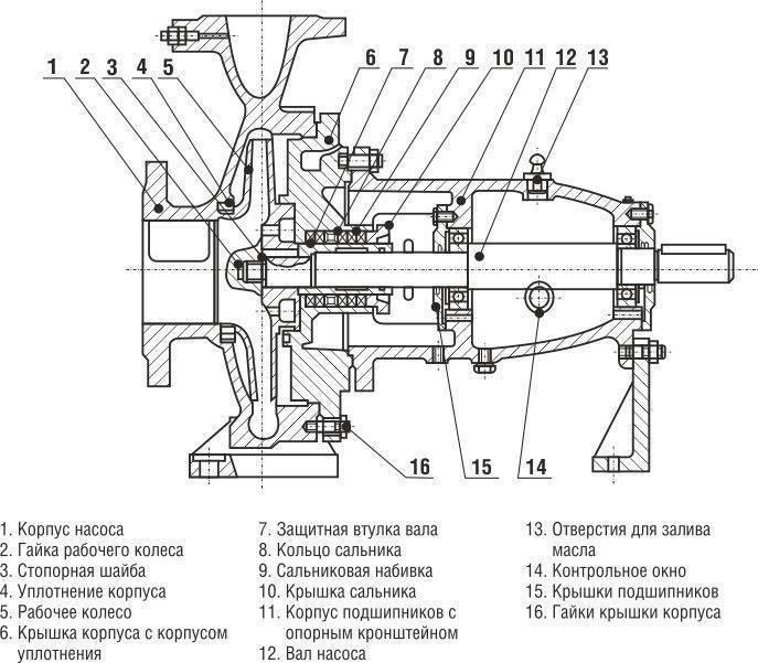 Центробежный насос для воды: принцип работы, устройство, цены, технические характеристики
