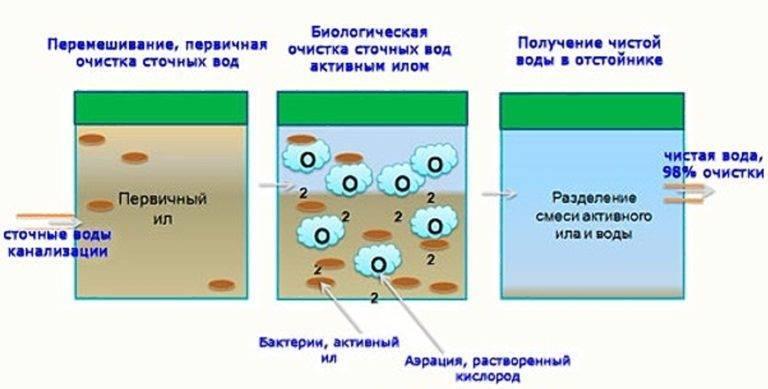 Технологии биологической очистки сточных вод