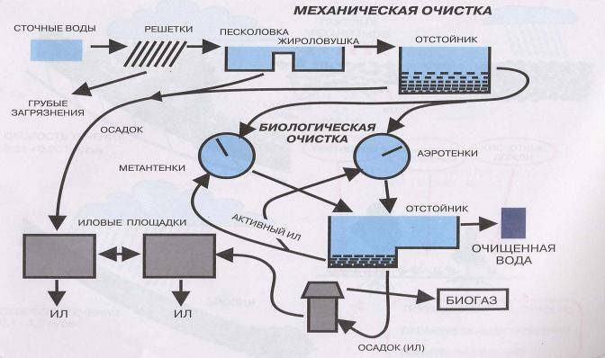 Биологическая очистка сточных вод