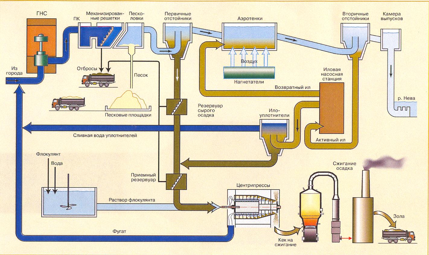 Биологическая очистка сточных вод: методы, сооружения, схемы