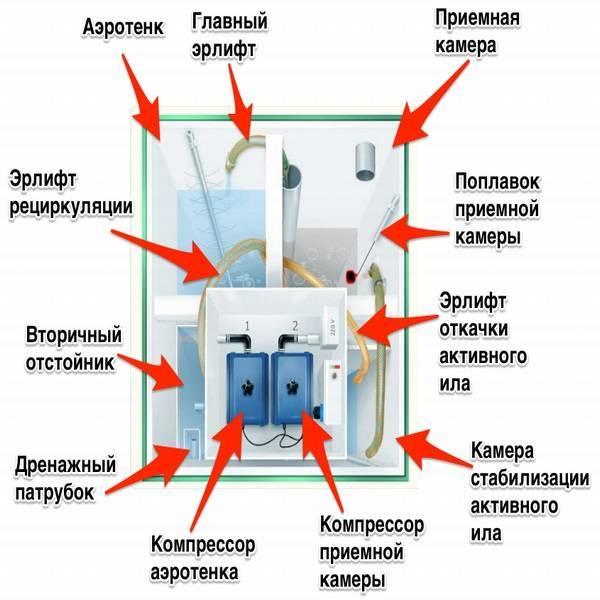 Как работает септик: схема устройства и принцип работы типовой конструкции