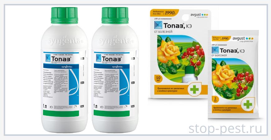 Фунгицид топаз: подробное описание препарата, 4 варианта применения и аналог