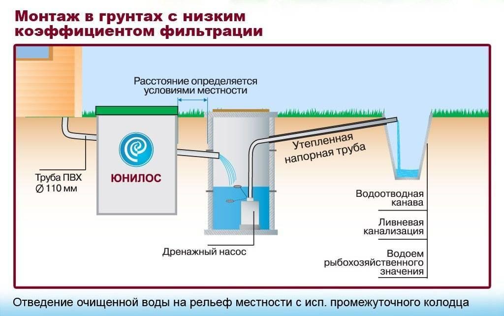 Эйхорния для очистки сточных вод